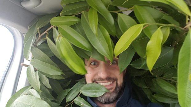 Skicklig och positiv växtskötare sökes!