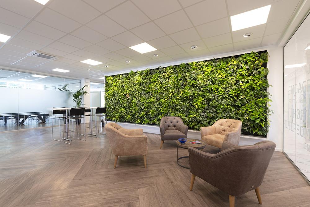 Växtvägg kontor
